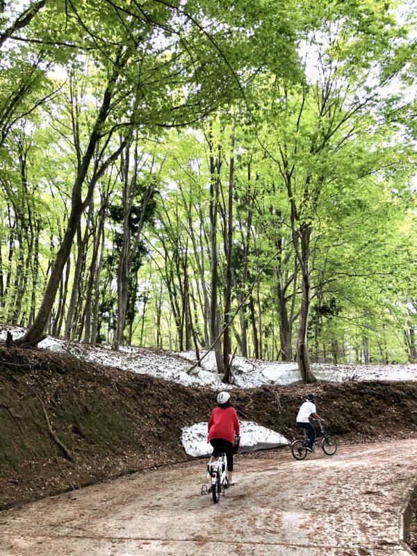 cycle-ooshima